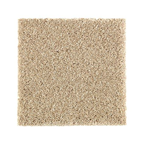 pet proof carpet petproof carpet sle whirlwind ii color shoe peg texture 8 in x 8 in mo 387321 the