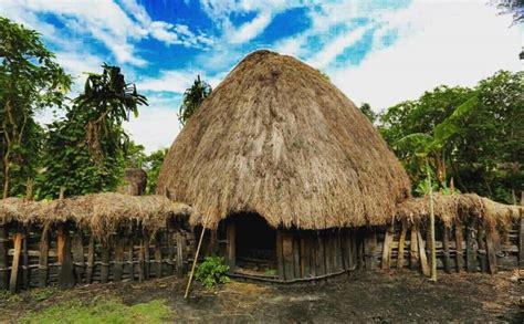 rumah adat papua honai gambar nama keunikan