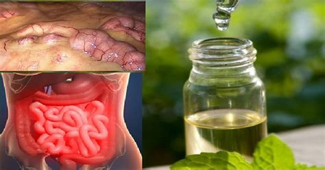 Toxins Removed By Detox by Remove All Toxins From The In 3 Days Prevent Cancer