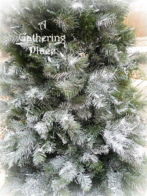 can you spray paint xmas tree white how to paint your tree winter white