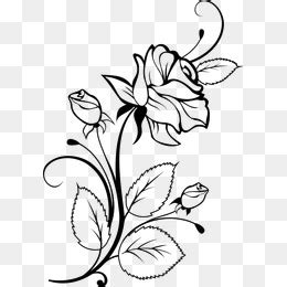 libro drawing flowers flower sketch png images vectors and psd files free download on pngtree