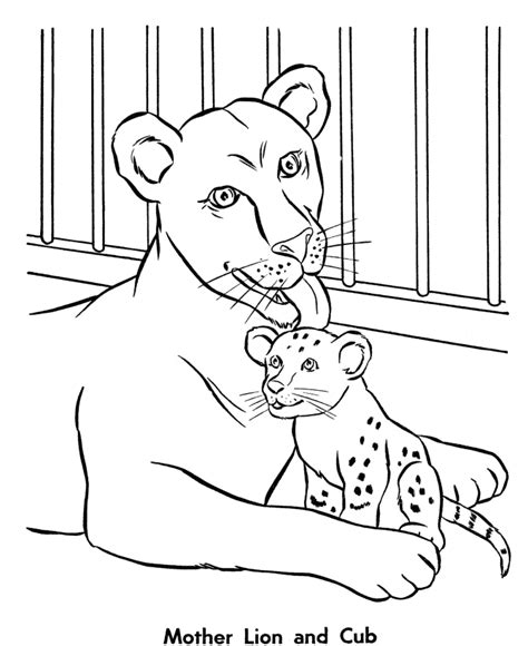coloring page of zoo animals zoo coloring pages 25 coloring kids