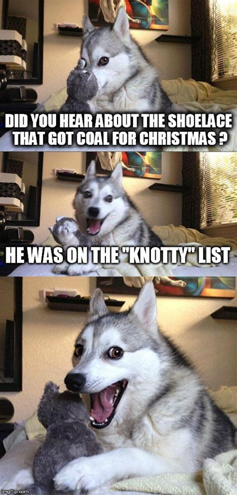 merry christmas  bad pun dog imgflip