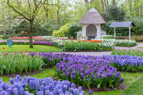 spring gardens keukenhof the most beautiful spring gardens in the world
