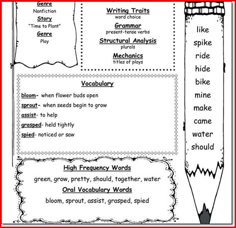 4 Grade Social Studies Worksheets by 1st Grade Social Studies Worksheets Project