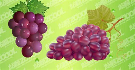 imagenes de uvas vector formato eps com visualiza 231 227 o em jpg as palavras cruciais