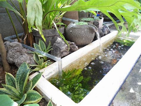desain kolam ikan kecil depan rumah kolam ikan minimalis dengan aneka tanaman di sekitarnya