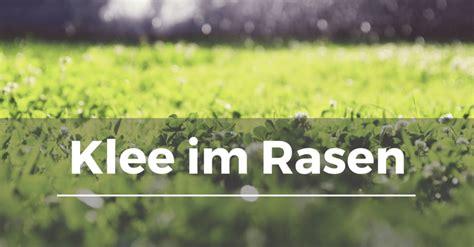 Unkraut Aus Rasen Entfernen by Unkraut Aus Rasen Entfernen