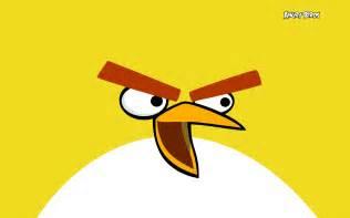 yellow angry birds wallpaper 28211861 fanpop