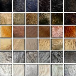 wolf fur colors 187 wolf information of fallen