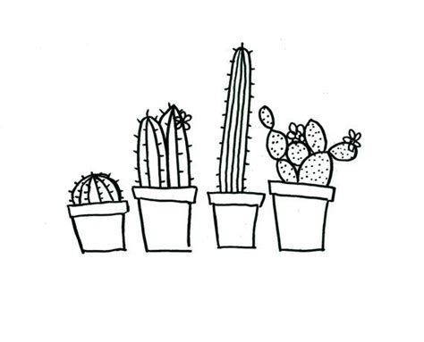 194 best cactus images on pinterest succulents