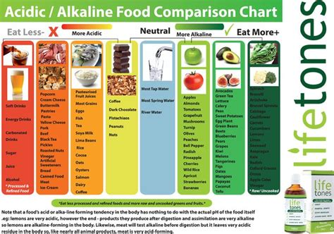 Printable Alkaline Recipes | alkaline and acidic food chart seattlenewsgx over blog com