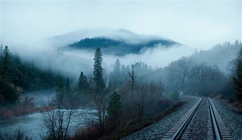 wallpaper rails forest morning fog tree railway