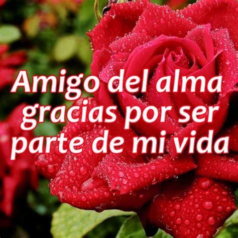 imagenes de flores para un amigo imagenes bonitas de rosas con frases de amistad para compartir