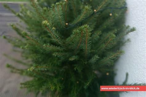 weihnachtsbaum in wiederitzsch entsorgen 2017 2018