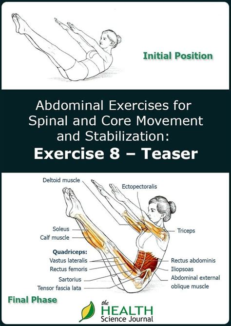 abdominal exercises for spinal and movement and stabilization exercise teaser