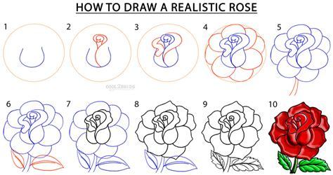 how to draw a dr
