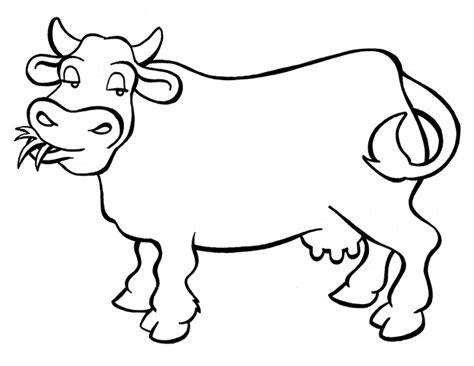 simple cow coloring page cow template animal templates free premium templates