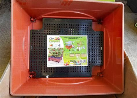 city pickers garden bed grow box kit    home