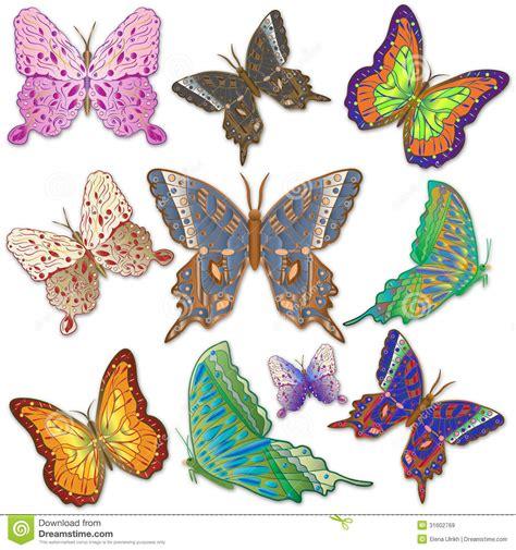 imagenes de mariposas brillantes the gallery for gt mariposas de colores brillantes