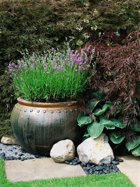 lavender container garden 10 ideas for using large garden containers page 10