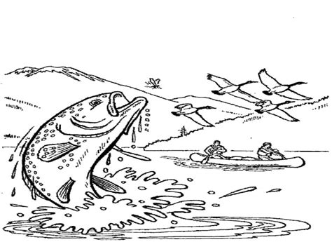 For Kids Download Rainbow Trout Coloring Page 76 With Rainbow Trout Coloring Page
