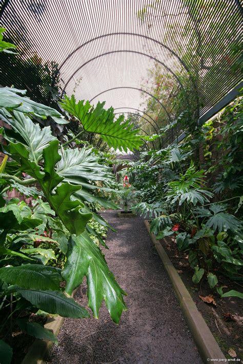 botanischer garten de la der botanische garten de la de la