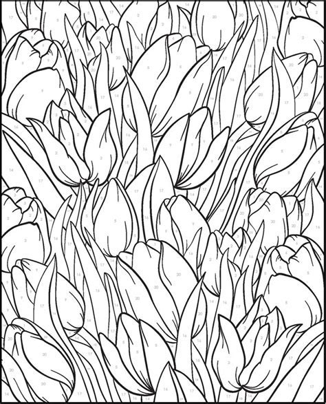 Creative Haven Floral Design Welcome To Dover Publications Coloring Pages By Number On Pinterest Color