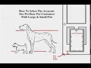 how to measure your pet s for the proper pet door size