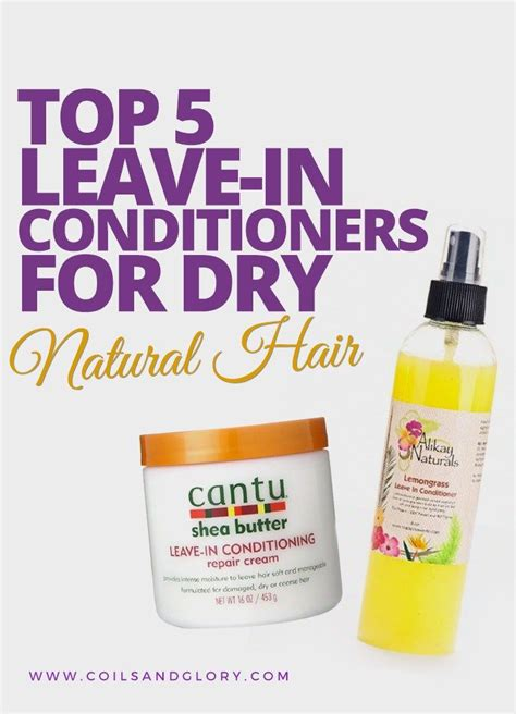 best leave in conditioner for dry frizzy hair 1000 images about curly hair on pinterest long curly