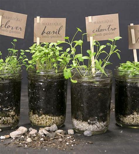 kitchen herb garden kit diy mason jar kitchen herb garden kit inactive crafting