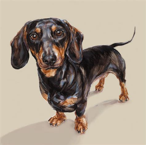 dachshund painting dog art print limited edition dog print