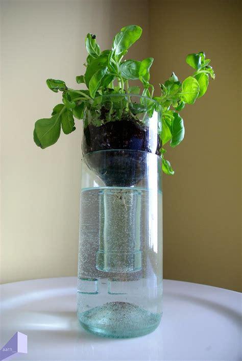 aarn cleaved wine bottle hydroponic herbs basil