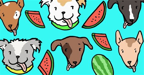 can dogs eat watermellon can dogs eat watermelon only certain parts are ok