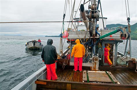jobs on a fishing boat in alaska what it s like to work on a commercial fishing boat in alaska