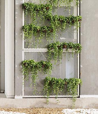 vertical garden ideas lovetoknow