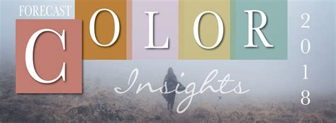color solutions international home color solutions international