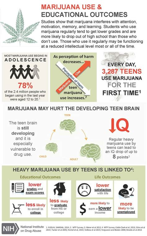 Marijuana Detox Facts by Best 25 Effects Of Abuse Ideas On The