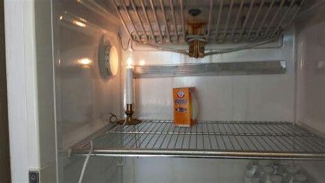 Freezer In Garage Winter by A Light Inside The Garage Fridge Keeps The Freezer On All