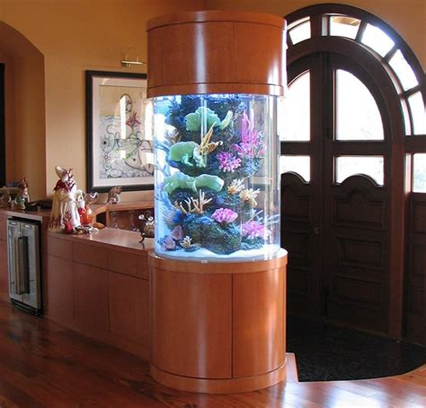 how to make professionally designed fish tank ideas
