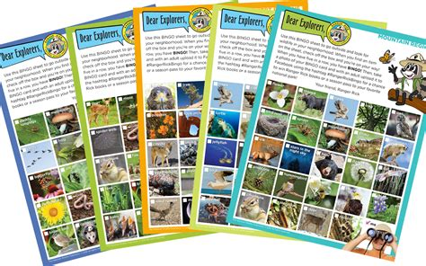 Wild Nature Sweepstakes - sweepstakes celebrate 50 years of ranger rick by playing nature bingo