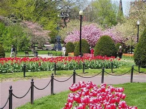 boston parks my velvet escape travel tip boston