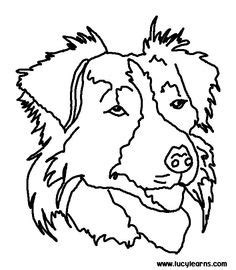 coloring pages of collie dogs 1000 images about border collie on