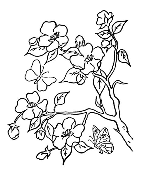 free coloring pages of trees and flowers flower page printable coloring sheets summer coloring