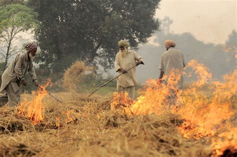 madhya pradesh police wikipedia mp farmers agitation death toll rises five dead