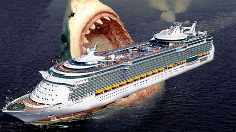 megalodon shark attacks boat 21 perfect cruise ship shark attack fitbudha