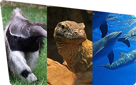 descuentos entradas zoo barcelona parques tem 225 ticos ventajas moviles
