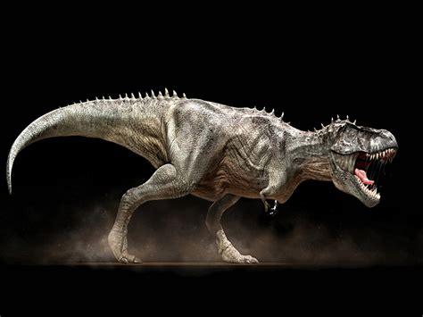 t rex t rex wallpapers fun animals wiki videos pictures stories