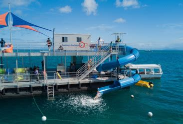 great barrier reef pontoon great barrier reef tours helicopter reef combo