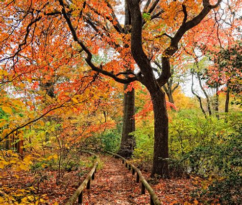 garden fall 16 beautiful gardens to visit in fall best